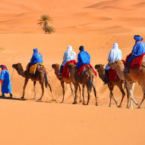 Marrakech Desert Tour